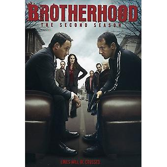 Brotherhood - Brotherhood: Season 2 [DVD] USA import