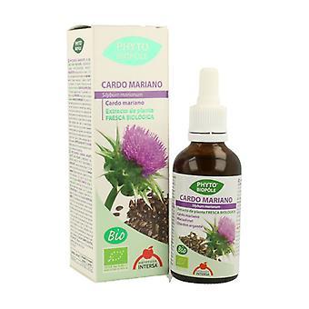 Phytobiopole Milk Thistle (Hepatoprotective Colagogo) 50 ml
