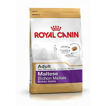 Royal Canin Maltese 24 Wholesome and Natural Adult Dry Dog Food 1.5KG