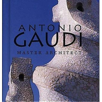 Antonio Gaudi: Master Architect (Tiny Folio)