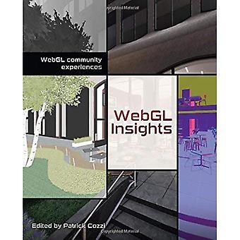 WebGL insikter
