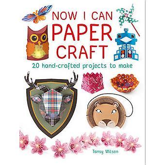 Nu kan jag paper craft 20 handgjorda projekt att göra av Tansy Wilson