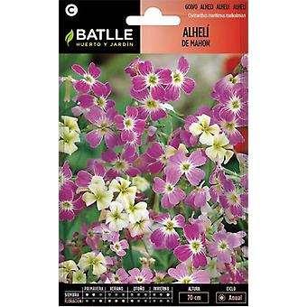 Batlle Virginian Stock (Garden , Gardening , Seeds)