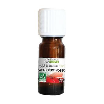 Geranium rosat essential oil 10 ml of essential oil