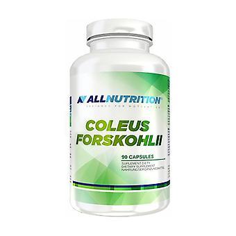 Coleus Forskohlii 90 cápsulas
