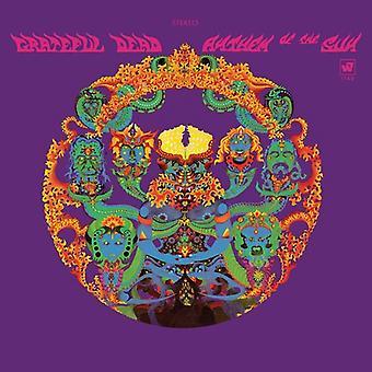 Grateful Dead - Anthem of the Sun [CD] USA import