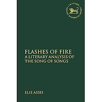 Flashes of Fire: A Literary Analysis of the Song of Songs (The Librarya of Hebrew Bible/Old Testament Studies)