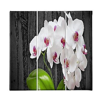 Bunte Blumen Malerei in Polyester, Holz, L23xP3xA50 cm (3 Stück)