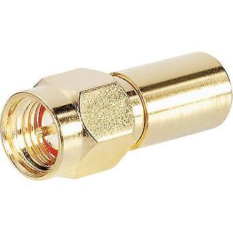 BKL Electronic 0409055 Terminator Silver 1 pc(s)