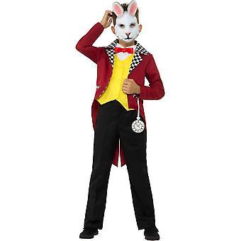 Hvit kanin drakt, gutter Fancy kjole, store alder 10-12