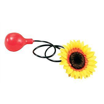Water Squirt Sunflower.