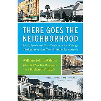 There Goes the Neighborhood: Racial, Ethnic, and Class Tensions in Four Chicago Neighborhoods and Their Meaning for America (Vintage)