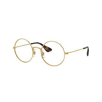 Ray-Ban Ja-Jo RB6392 2969 Gold-Havana Glasses