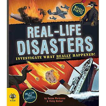 Reallife Disasters by Susan Martineau