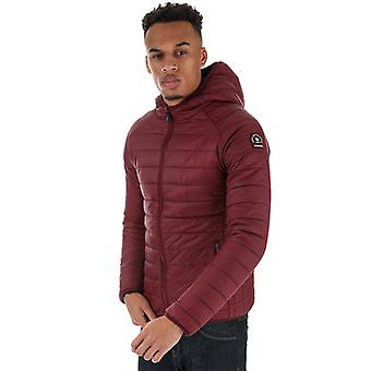 Men's Henleys Carlyon Hooded Puffa Jacket in Red