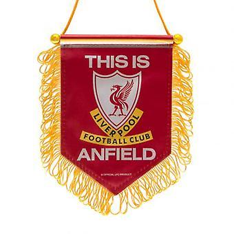 Liverpool Mini Pennant TIA