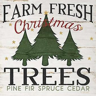 ファーム新鮮なクリスマス ツリー ジェニファー ピューでポスター印刷