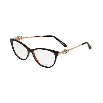 Chopard VCH265S 09XK Shiny Dark Havana Glasses