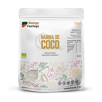 Dehydrated Coconut Flour Eco XXL Pack 1 kg of powder