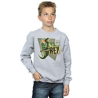 Disney jongens Toy Story Partysaurus Rex Sweatshirt