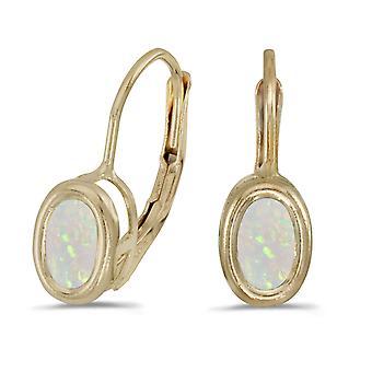 LXR 14k Yellow Gold Oval Opal Frame Frame Folding Bracket Earrings 0.38ct