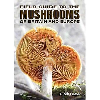 Guide de terrain pour les champignons de la Grande-Bretagne et l'Europe