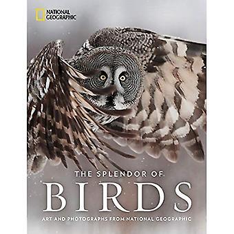 Die Pracht der Vögel: Kunst und Fotografie von National Geographic