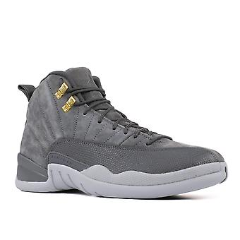 Air Jordan 12 Retro mørk grå - 130690-005 - sko