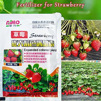 Strawberry Supplemental Plant Nutrition Hydroponics Expanded Fruit Rapid