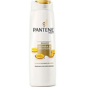 Pantene-Shampoo herstelt en beschermt Duplo 360 ml