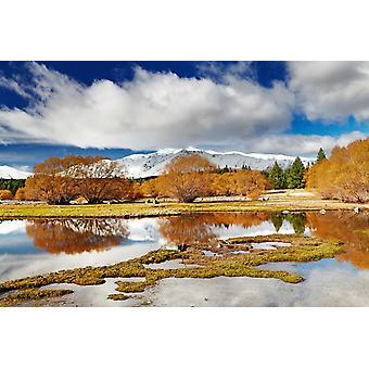 Tapetmaleri Fjellandskap ved Tekaposjøen i New Zealand (32522485)