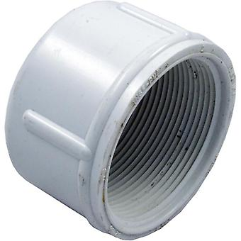 "LASCO 448-020 2"" FTP Threaded Cap"