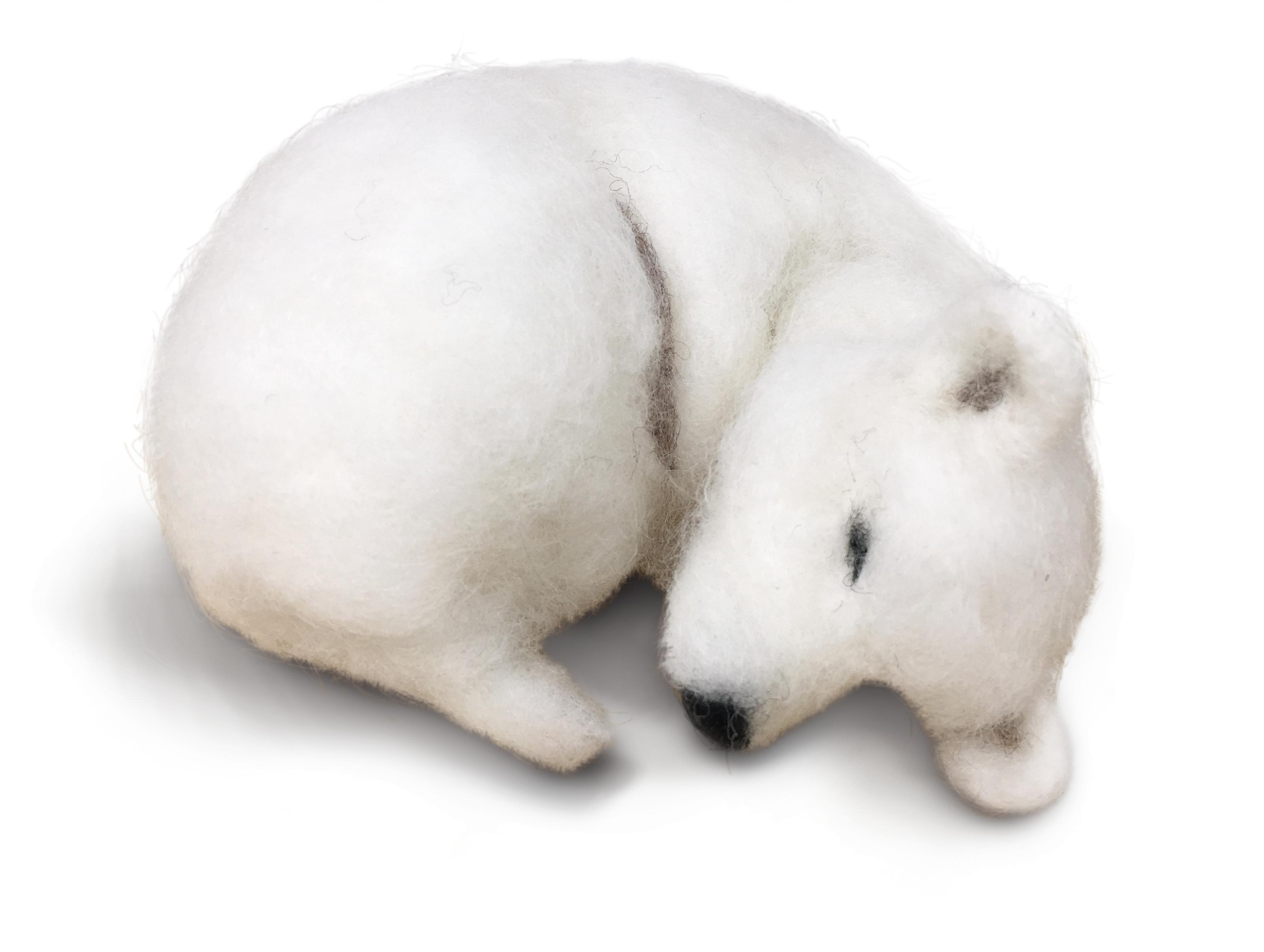 Snoozy Polar Bear Needle Felting Kit