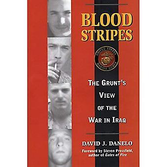 Blod ränder: Den Grunts syn på kriget i Irak