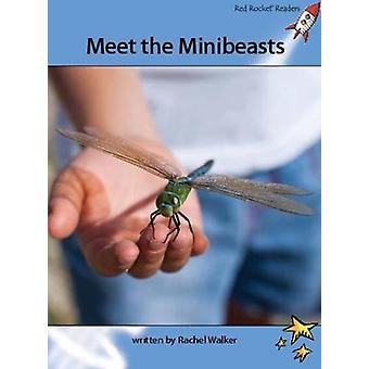 Meet the Minibeasts by Rachel Walker - 9781927197790 Book