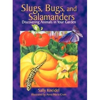 Slugs Bugs and Salamanders by Kneidel & Sally