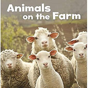 Állatok a gazdaságban (mezőgazdasági tények)