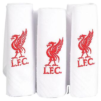 Liverpool FC Handkerchief (Pack of 3)