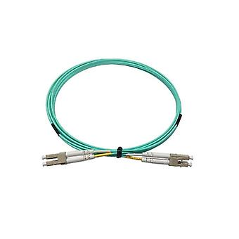 Lc 10 Gigabit Multimode Duplex Fiber Jumper