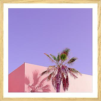 Roze palma fotoposter
