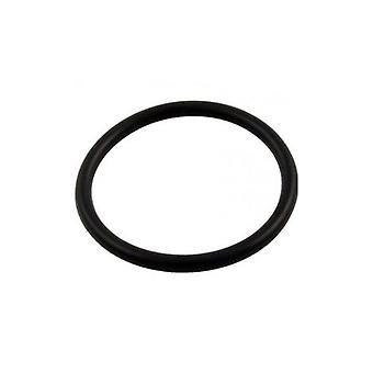 Pentair U9-374 Master Pack Diffuser O-Ring