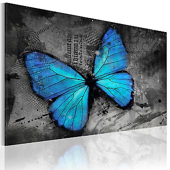 Canvas Print - The study of butterfly