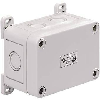Spelsberg 19400101 TK TK ABP TK esterno fissaggio aletta compatibile con involucro in plastica TK (Dettagli)