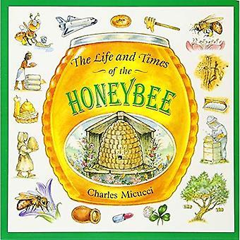 Życie i czasy miód pszczeli
