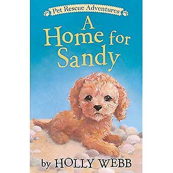 Une maison pour Sandy (aventures de sauvetage pour animaux de compagnie)