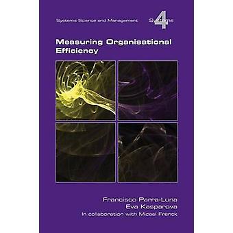 Measuring Organisational Efficiency by ParraLuna & Francisco