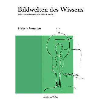 Bilder in Prozessen by Claudia Blumle - 9783050037813 Book