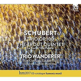 Schubert / Trio Wanderer - Piano Trio Op100 / Trout Quintet [CD] USA import