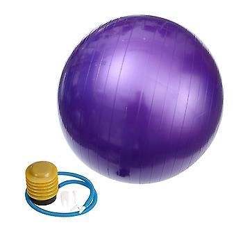 65X65cm الأرجواني 65cm 800g المهنية المضادة للانفجار استقرار الكرة اليوغا موازنة أداة ممارسة devcie لتمارين اللياقة البدنية الصالة الرياضية dt2796