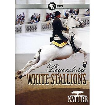 Nature - Legendary White Stallions [DVD] USA import